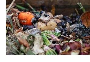 Groenten en fruit afval