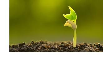 Bio landbouw